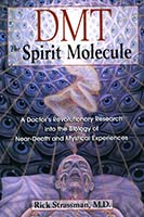DMT : the spirit molecule