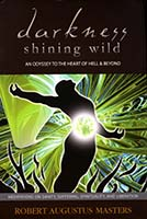 Darkness shining wild : an Odyssey to the heart of Hell & beyond ; meditations on sanity, suffering, spirituality, and liberation