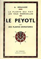 La plante qui fait les yeux émerveillés : le peyotl